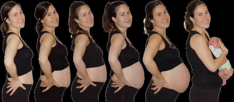 genevieve-pregnancy-timelapse1